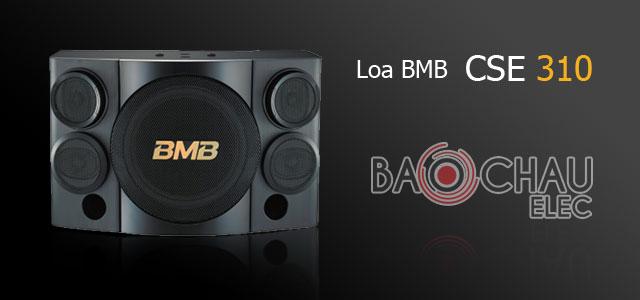 anh-loa-bmb-cse-310