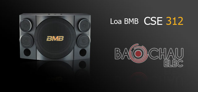 anh-loa-bmb-cse-312