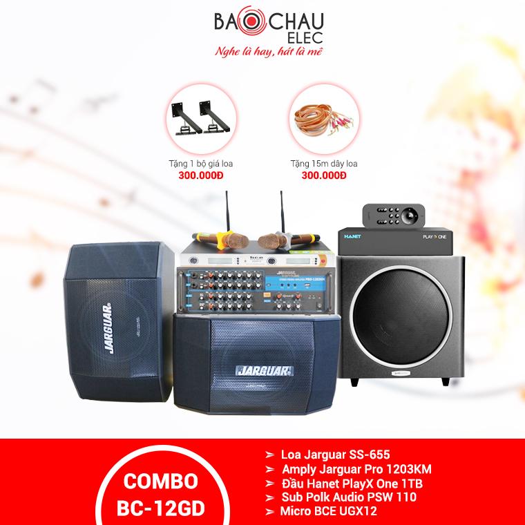 Dàn karaoke gia đình BC-12GD