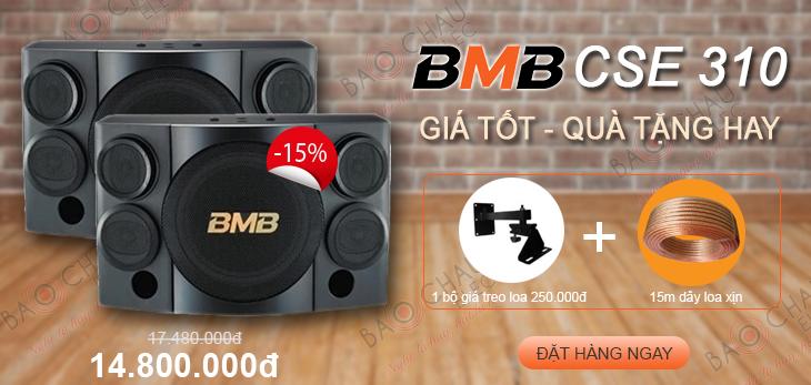 loa-bmb-310