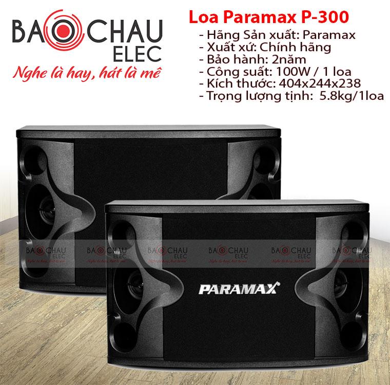 Loa karaoke paramax P300