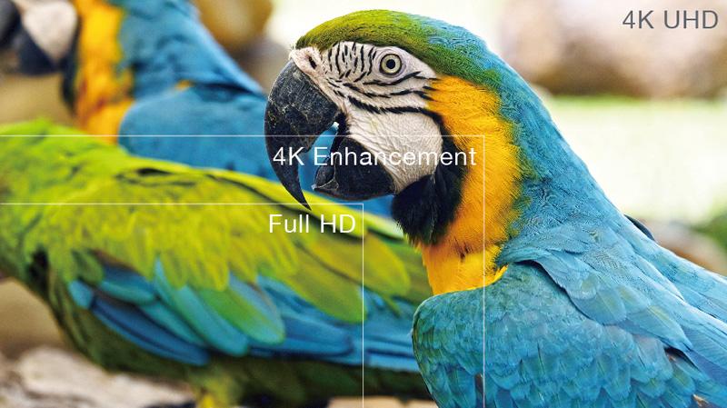 Máy chiếu Optoma UHD51A có độ phân giải hình ảnh 4K