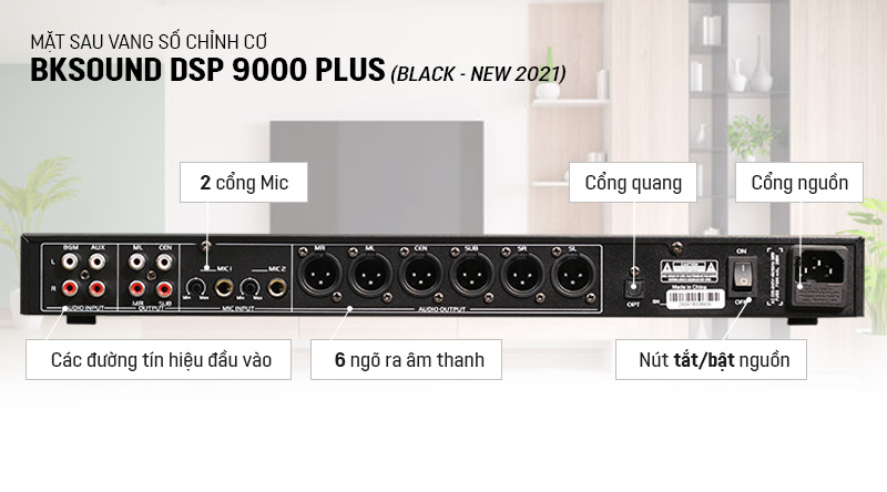 Mặt sau vang số BKSound DSP-9000 Plus Black