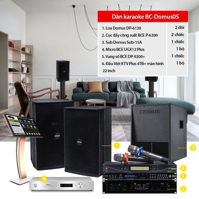 Dàn karaoke cao cấp BC-Domus05