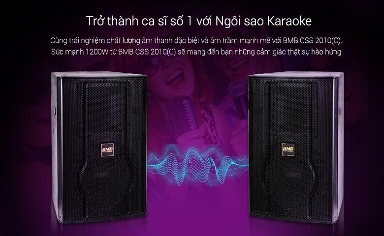Loa karaoke BMB CSS 2010C like new cấu tạo gồm 2 củ loa