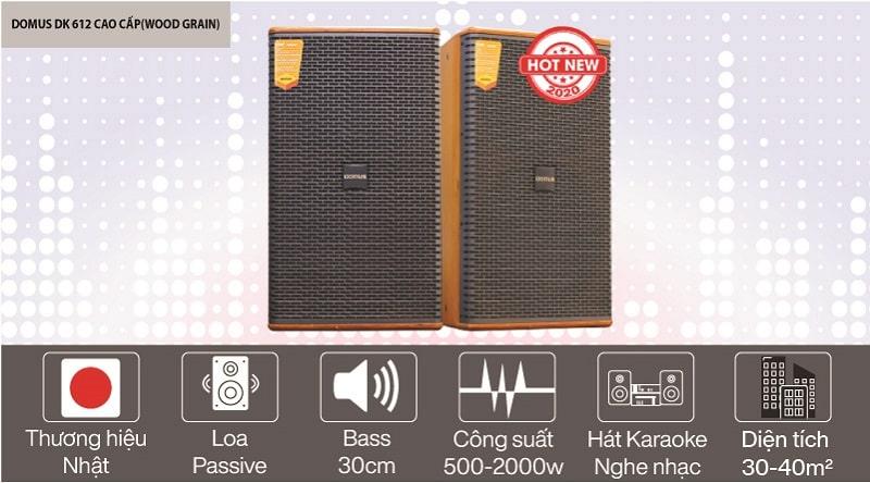 Loa karaoke Domus DK 612