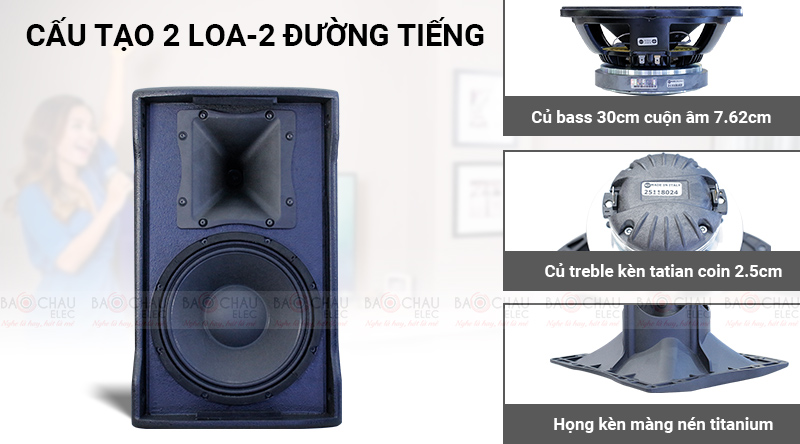 Loa karaoke RCF C MAX 4112 sở hữu cấu trúc 2 loa, 2 đường tiếng
