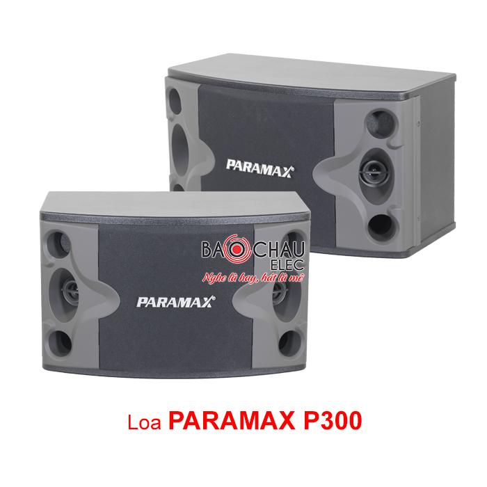 Loa Paramax P300 chính hãng, giá rẻ nhất hiện nay