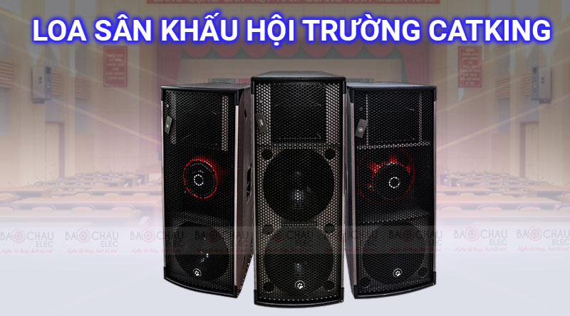 Loa hội trường catking