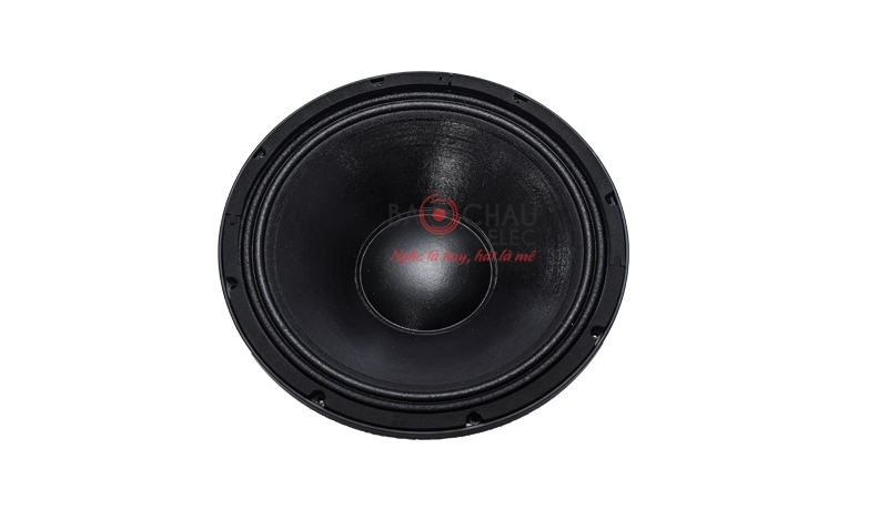 Loa karaoke Domus DP 6100 chính hãng