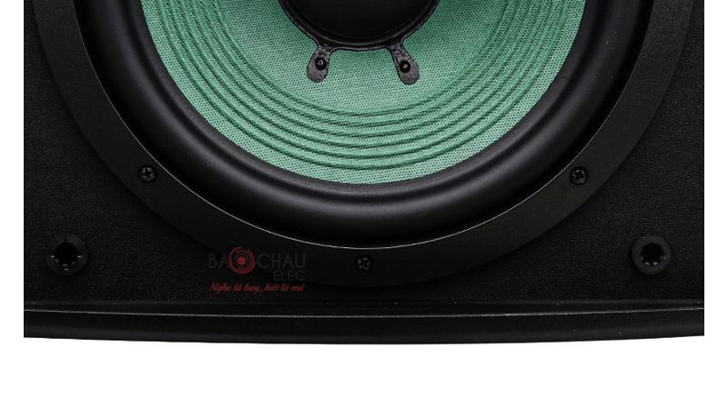 Loa karaoke Paramax P1500 mặt trước 2
