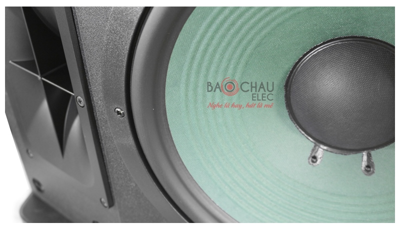 Loa karaoke Paramax P2500 mặt trước 4