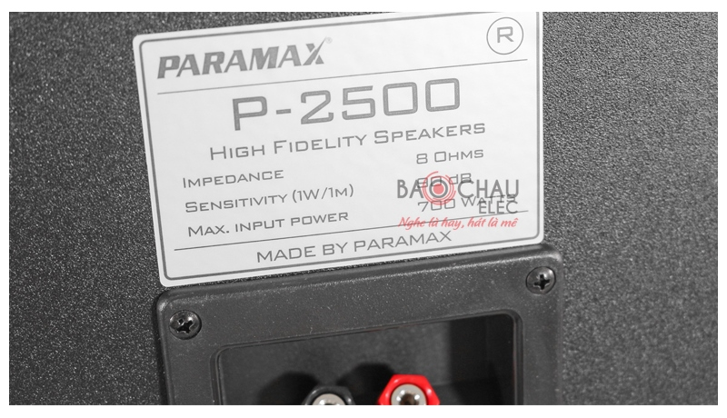Loa karaoke Paramax P2500 mặt sau 5