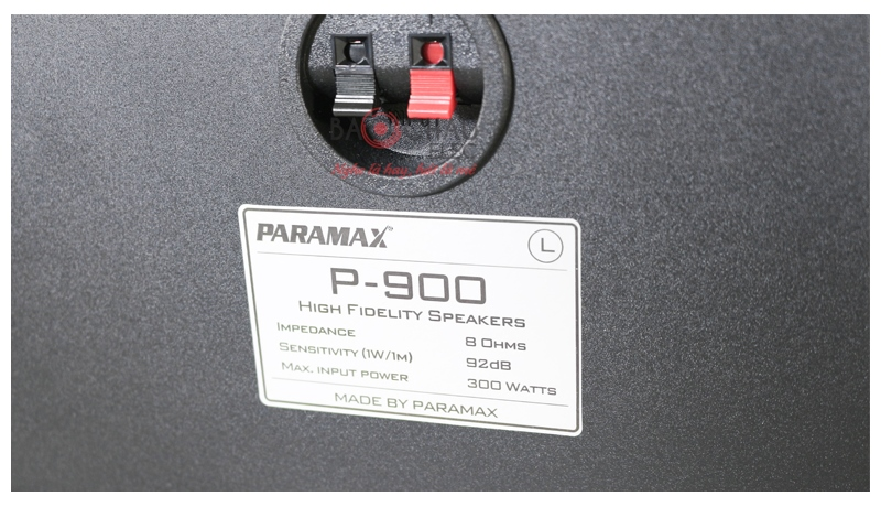 Loa karaoke Paramax P900 mặt sau 4