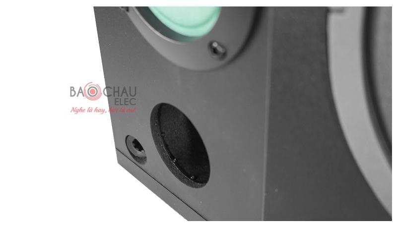 Loa karaoke Paramax P900 mặt trước 5
