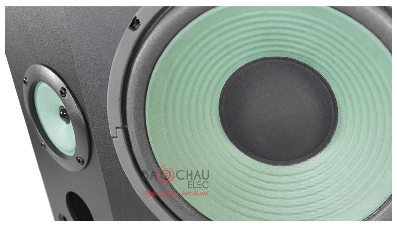 Loa karaoke Paramax P900 mặt trước 2