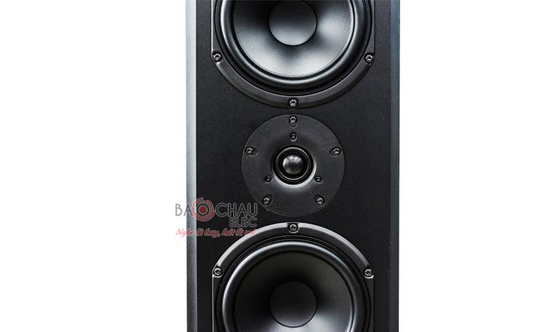 Loa Paramax Platinum D88 mặt trước 2