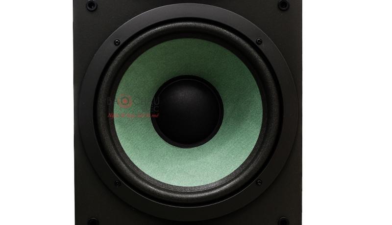 Loa bass của Paramax F2000 New