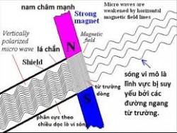 Sóng radio là gì, tìm hiểu về sóng radio