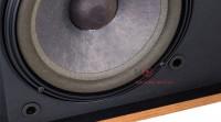 Bass loa bose 4.2 seri 2