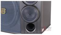 Loa BMB CSD 880SE mặt trước 5