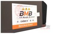 Loa BMB CSV 450SE mặt tem1