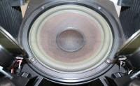 loa bass của bose 601 seri 2