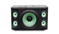 Loa karaoke Paramax P1000 mặt trước 1