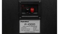 Loa karaoke Paramax P1000 mặt sau 2