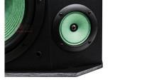 Loa karaoke Paramax P1000 mặt trước 3