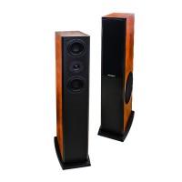 Loa karaoke Paramax D2000s
