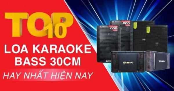 Top 10 loa karaoke bass 30cm hay nhất hiện nay