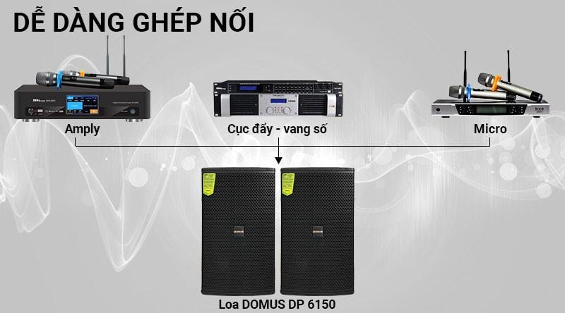 Loa karaoke Domus DP 6150
