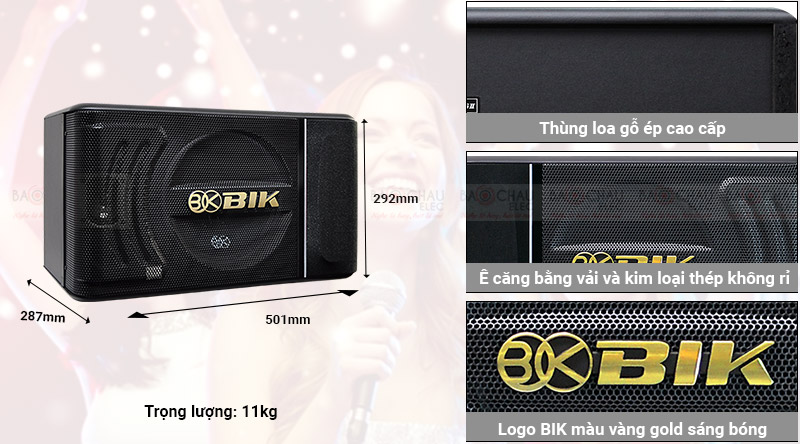 Loa karaoke Nhật BIK BJ S886