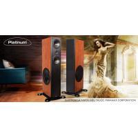 Loa Paramax Platinum D88