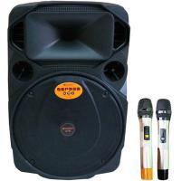 Loa kéo Sansui A15-66 (Bass 30cm)