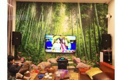 Lắp đặt dàn karaoke gia đình anh Sơn tại Bắc Ninh (BIK BSP 412, VM620A, DSP9000, Sub2000, UGX12)