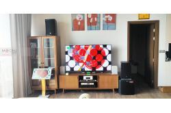 Lắp đặt dàn karaoke gia đình anh Tuấn tại Quảng Ninh (RCF EMAX 3110, VM620A, KX180, TS312Sub, UGX12...)