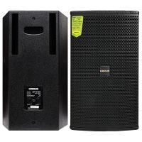 Loa karaoke Domus DP 6100 (full bass 25cm)