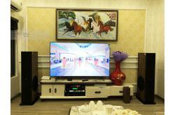 Lắp đặt dàn karaoke gia đình chị Mai tại Hà Nội (Paramax D88, APP MZ-66, X6-Luxury, U900 Plus X)
