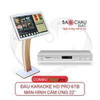 Combo VietKTV HD Pro 6TB + màn 22 inch
