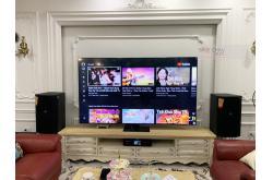 Lắp đặt dàn karaoke gia đình anh Dũng tại Hà Nội (JBL XS12, BKSound DKA 8500, JBL A120P)