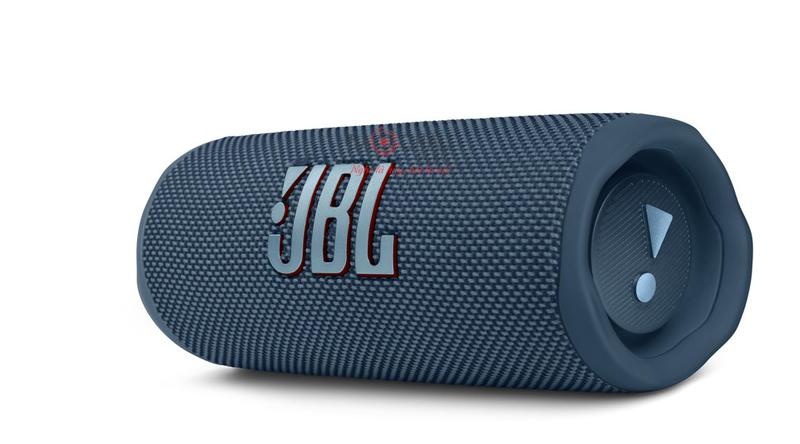 Loa JBL Flip 6 (Model 2021)