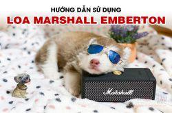 Hướng dẫn sử dụng Loa di động Marshall Emberton chi tiết