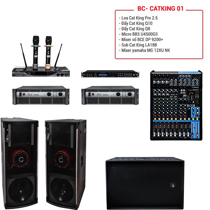 Dàn âm thanh hội trường, sân khấu BC-CatKing 01 chính hãng, giá tốt