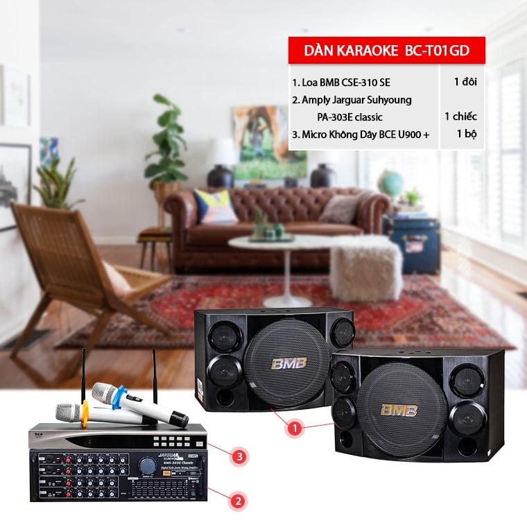 dan-karaoke-BC-T01GD