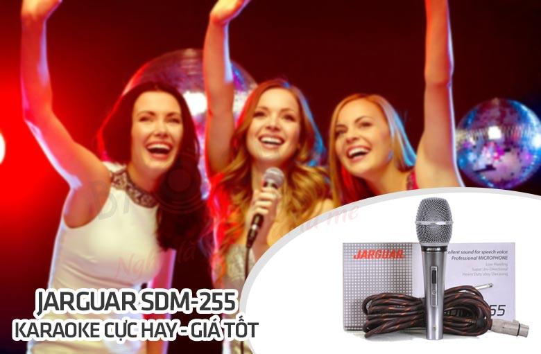jarguar-sdm-255-hat-karaoke-hay