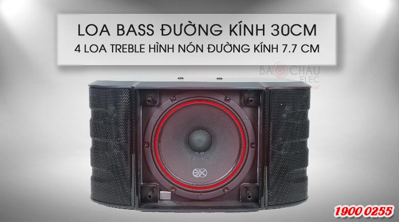 Loa karaoke BIK BS-999X trang bị 1 củ bass 30cm