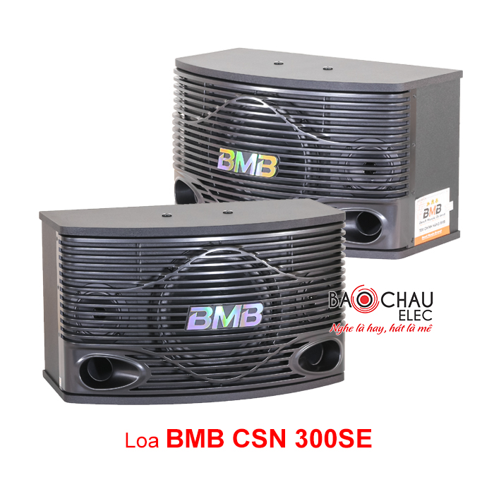 Loa BMB CSN 300 ( News)