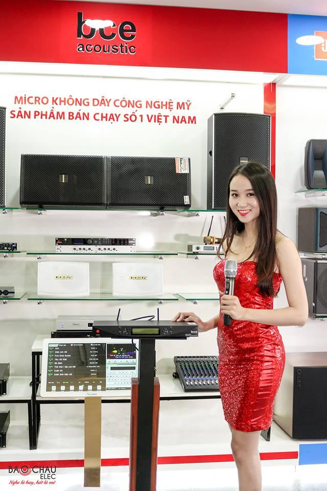 micro-bce